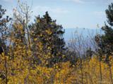 1100 Osprey Road - Photo 5