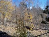 1100 Osprey Road - Photo 6