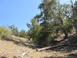 2246 Vista Grande Drive - Photo 10