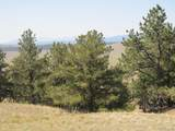 2246 Vista Grande Drive - Photo 16