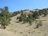 2246 Vista Grande Drive - Photo 24
