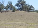 2246 Vista Grande Drive - Photo 3
