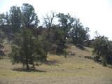 2246 Vista Grande Drive - Photo 4