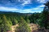 32026 Half Peak Trail - Photo 1
