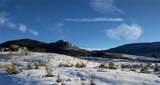 31650 Shoshone Way - Photo 14