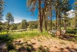 25523 Turkey Creek Road - Photo 16