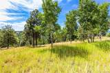 29653 Meadow Spur Lane - Photo 19