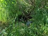 191 Two Creeks - Photo 15