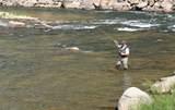 191 Two Creeks - Photo 33