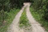 1520 Lump Gulch Road - Photo 17