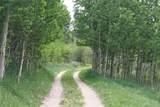 1520 Lump Gulch Road - Photo 7