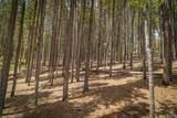 101 Sioux Trail - Photo 12
