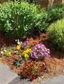 0102 Lake Ridge Circle - Photo 22