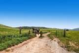 11351 Main Range Trail - Photo 28