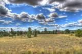 890 Buffalo Ridge Road - Photo 2