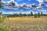 890 Buffalo Ridge Road - Photo 6