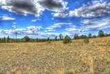 890 Buffalo Ridge Road - Photo 7