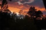 11628 Ranch Elsie Road - Photo 38