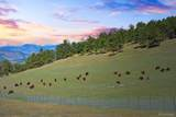 00 Range View Trail West - Photo 12