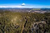 29319 Spruce Canyon Drive - Photo 34