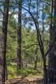 Tree Valley Lane - Photo 12
