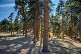 7086 Timbers Drive - Photo 38