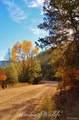 33022 Fisher Peak Parkway - Photo 30