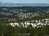 33022 Fisher Peak Parkway - Photo 6