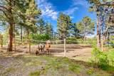 2690 Lake Meadow Drive - Photo 3