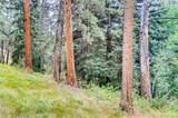0 Upper Bear Creek Road - Photo 11