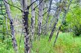 0 Upper Bear Creek Road - Photo 13