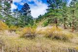 0 Upper Bear Creek Road - Photo 32