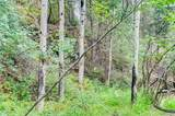 0 Upper Bear Creek Road - Photo 7