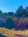 47 Bird Point Drive - Photo 10