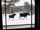 376 Deer Crossing Rd - Photo 11