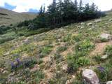 12867 & 16318 Mineral Surveys - Photo 25