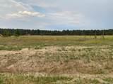 17161 Jackson Ranch Court - Photo 1