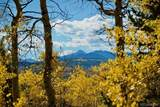 16 County Road 6234 - Photo 5
