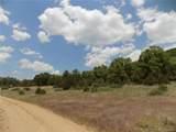 16116 Rocky Mountain Road - Photo 12