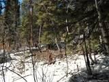 589 Mine Dump Road - Photo 16