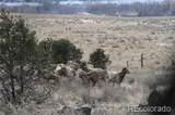 11444 Antelope Road - Photo 20