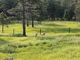 5570 Sunshine Canyon Drive - Photo 38