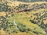 Lot 80 Turkey Ridge Ranch - Photo 1