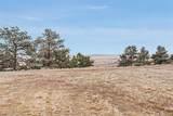 37980 Comanche Creek Road - Photo 38