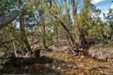 200C & 202 Butterfly Trail/Staghorn Road - Photo 17