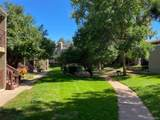 5300 Cherry Creek South Drive - Photo 27