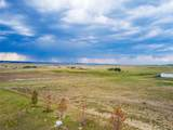 32155 Cattle Circle - Photo 7