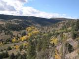 Fox Creek - Photo 1