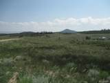 1349 Pinto Trail - Photo 15