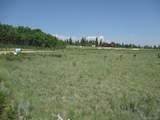 1349 Pinto Trail - Photo 21